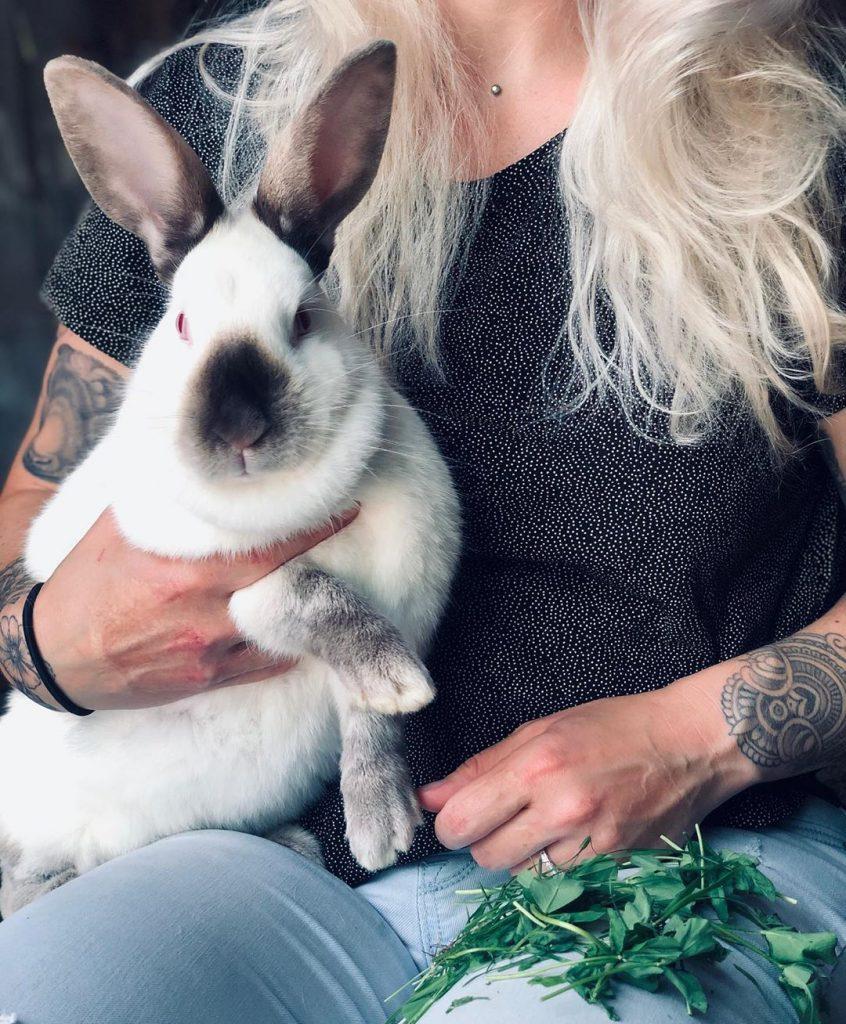 woman holding large rabbit