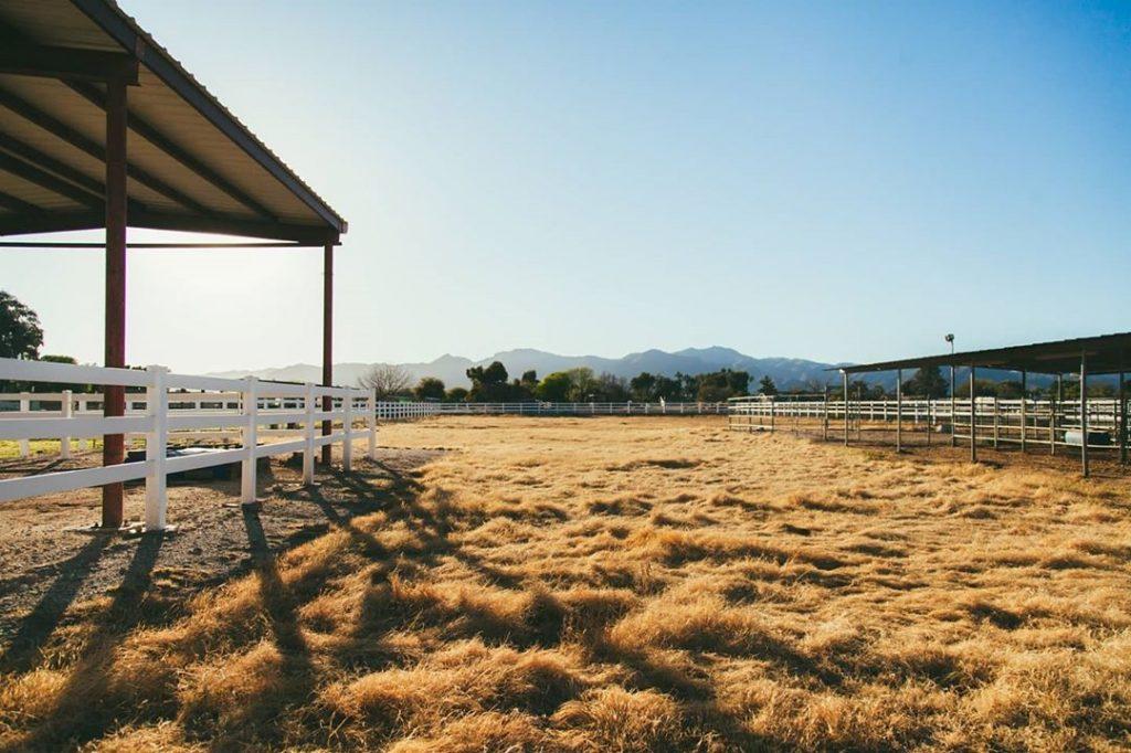 farm field Phoenix Arizona