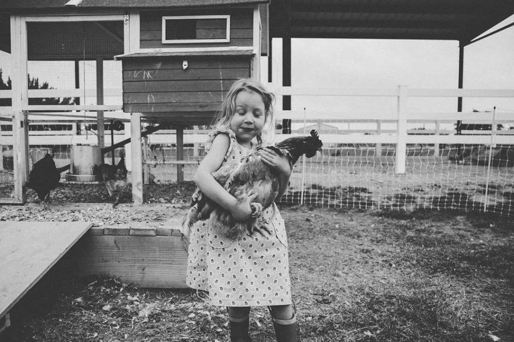 little girl holds chicken