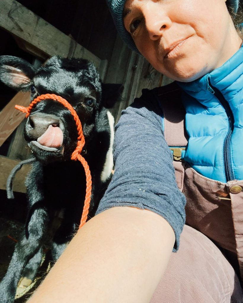 woman selfie with cow