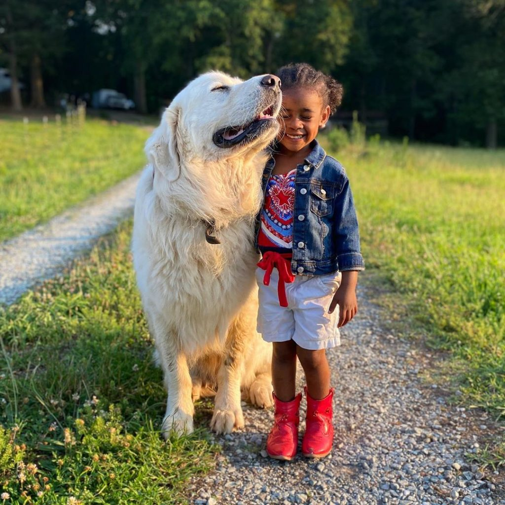 small girl big dog