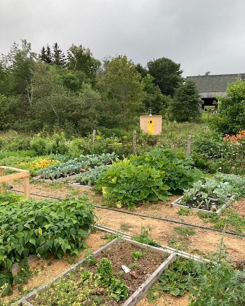 homestead garden