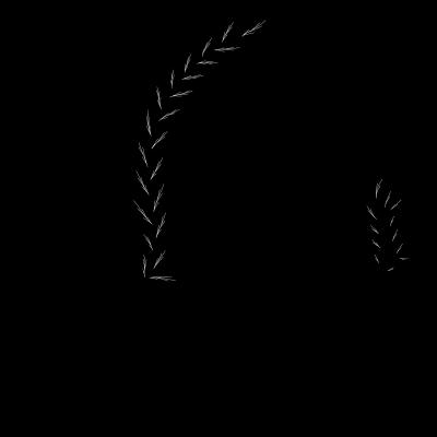 Graphic 3 crop